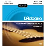 D'Addario Acoustic Bass
