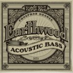 Ernie Ball Earthwood Acoustic Bass